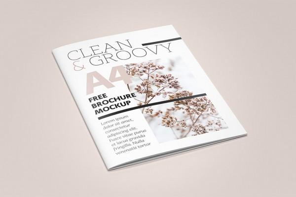 brochure-mockup-free3-600x400